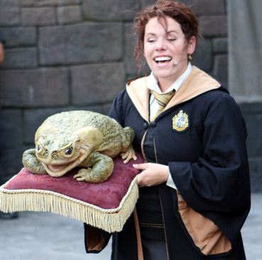SAPO DO HARRY POTTER ISLANDS OF ADVENTURE